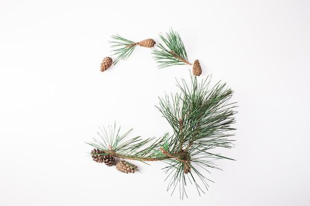 Сосновая ветка с шишкой на белом для рождественских украшений