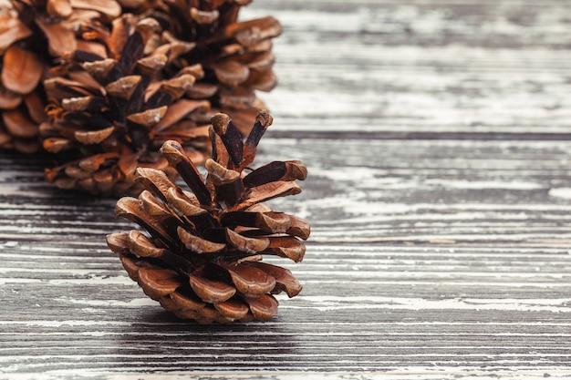 나무 테이블에 소나무 콘