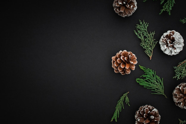 Сосновые шишки и ветви на темном фоне