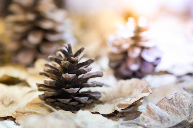 소나무 콘 및 말린 꽃, 크리스마스 장식