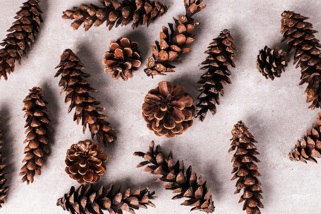Pine cones background