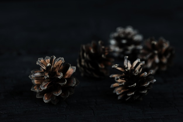 Pine cones on black wooden background