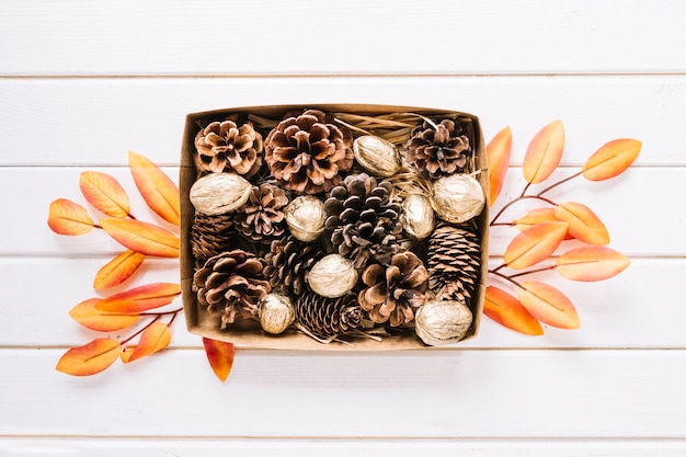 Pine cones in box on white background