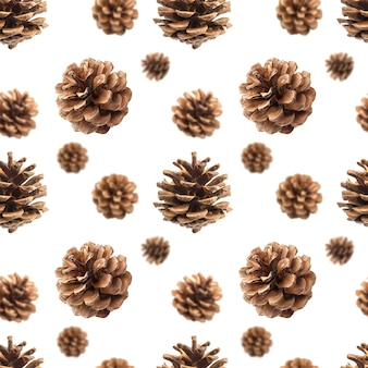 Pine cones seamless pattern isolated on white
