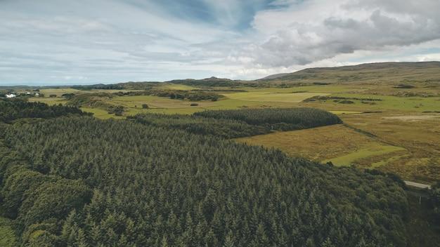 緑の谷の松林空中誰も自然の風景道路の田舎の農地素晴らしい緑