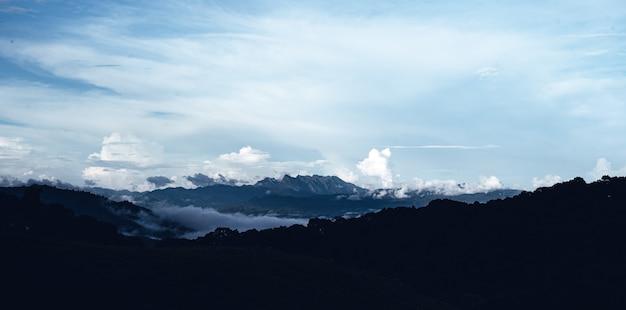 ドローンの上の朝の形で山の松林