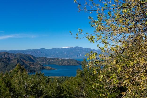 ムーラの海の上の松林-トルコ