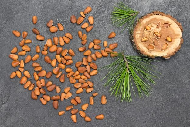 Pine nut kernels, pine nut shells. cedar branch.