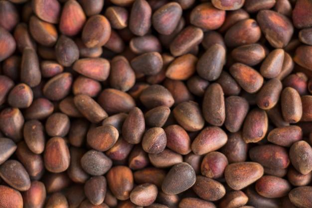 Pine pine nuts