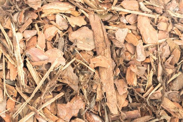 Pine tree bark on the ground