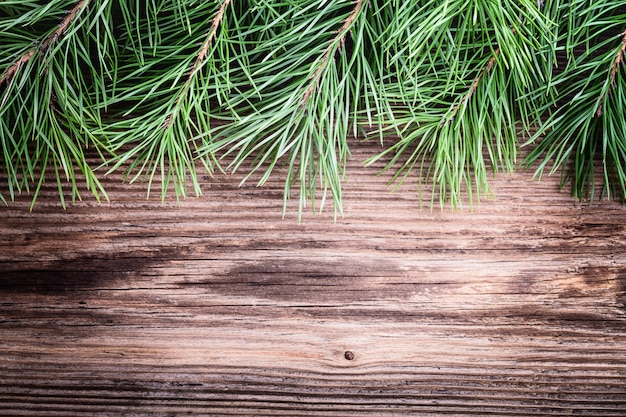 Pine-tree branches on wooden surface