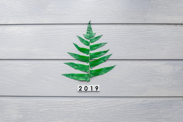 Pine tree idea concept with 2019 new year and merry christmas on wood texture background.