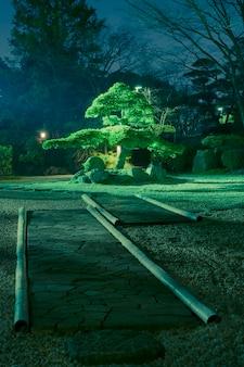 Pine tree inside japanese zen garden with scenic night illumination