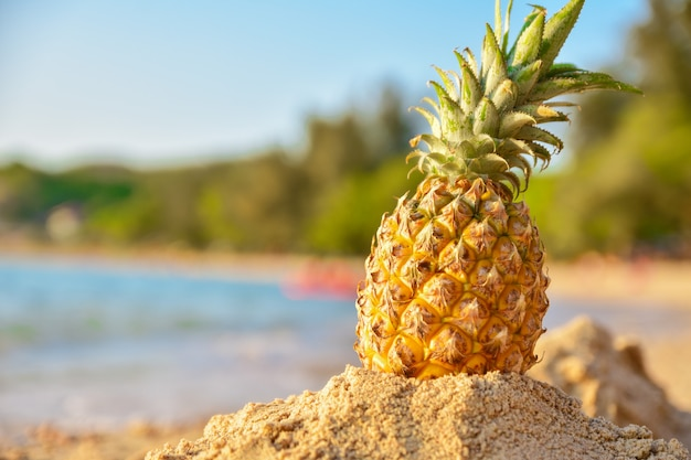 Pineapple on beach and sea view background