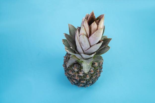 Ananas sulla superficie blu