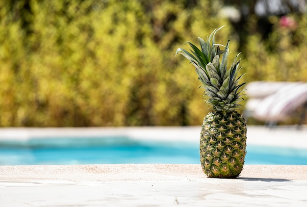 Pineapple on the edge of a swimming pool.