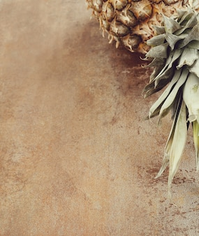 Pineapple fruit with copyspace