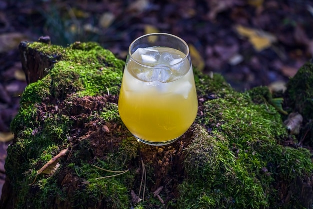 Pineapple, mango, lemon drink in glass outdors on wood with moss. cold yellow cocktail with ice cubes. scenic still life with summer  alcoholic beverage.