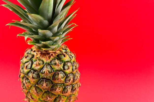 赤い背景にパイナップル。テキストやデザインのためのスペース。
