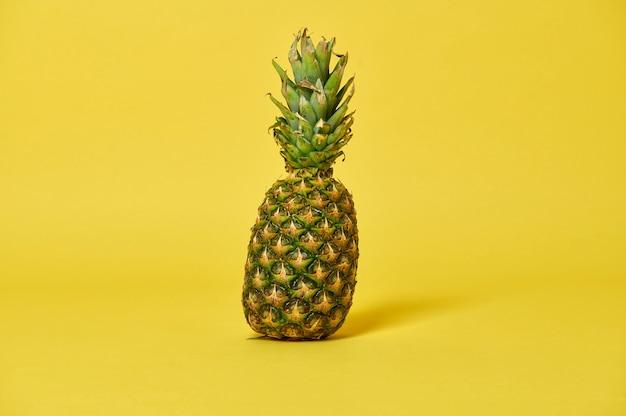コピースペースと黄色の背景にパイナップル