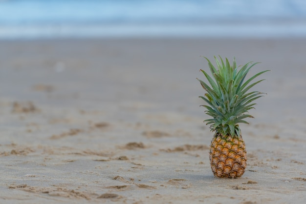Pineapple put on the beach,  summer vacation trip.