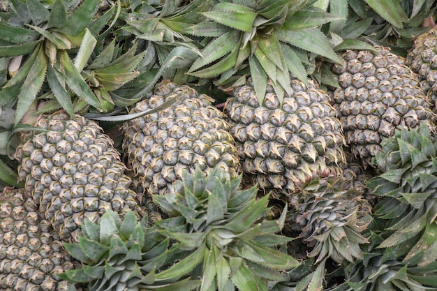 Pineapple in a vegetable and fruit market.