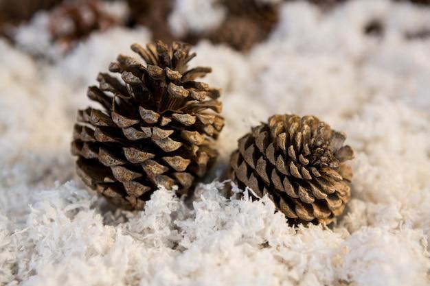 Pinecone on fake snow