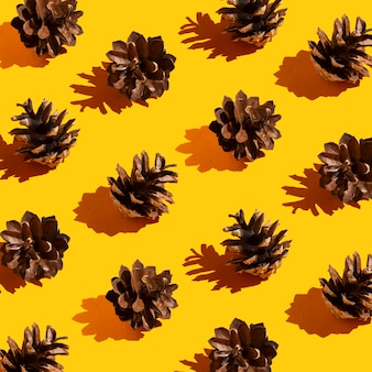 Pinecones with long hard shadows pattern