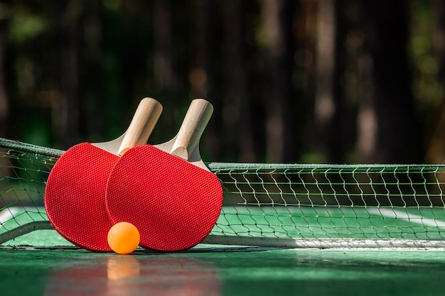 Ping pong table, racket and ball game in nature
