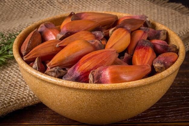 Pinion, traditional brazilian food, seed of the auraucaria