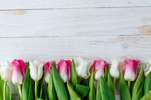 Pink adn white tulips on white wooden surface