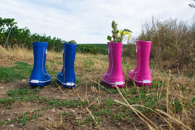 Розовые и синие резиновые сапоги с красивым зеленым виноградником осенью. стиль кантри.