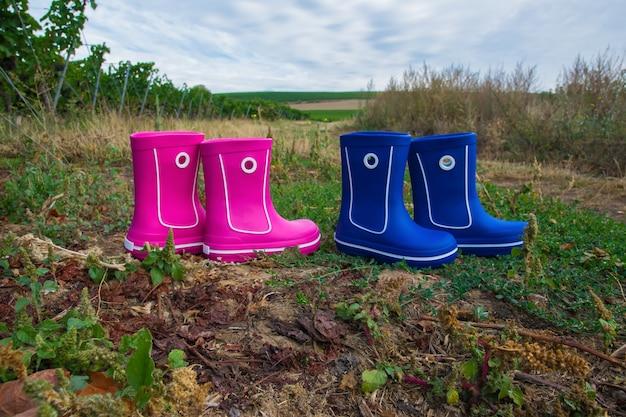 ブドウと美しい緑のブドウ園が付いているピンクと青のゴム長靴。カントリースタイル。