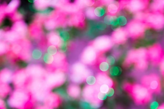ピンクと緑の抽象的なbokeh defocusedライトの背景