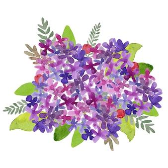 Розовая и фиолетовая гортензия букет акварельная живопись с зелеными листьями