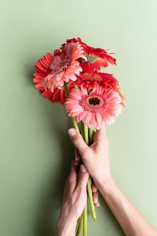 緑の背景にピンクと赤のガーベラの花束。ミニマルなデザインのフラットレイ。誕生日の花を保持している女性の手