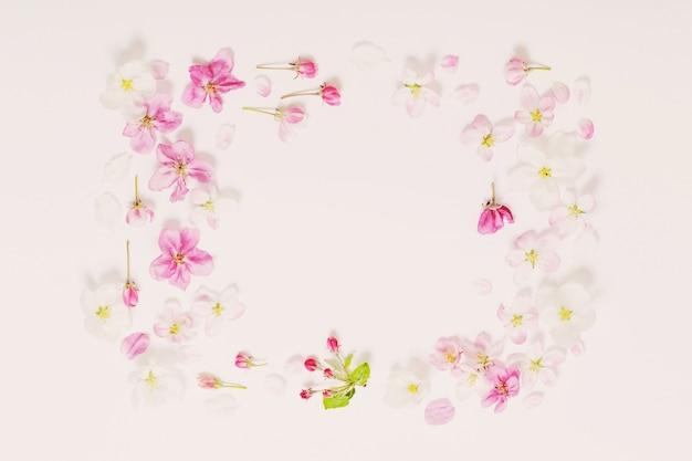 흰색 바탕에 분홍색과 흰색 사과 꽃