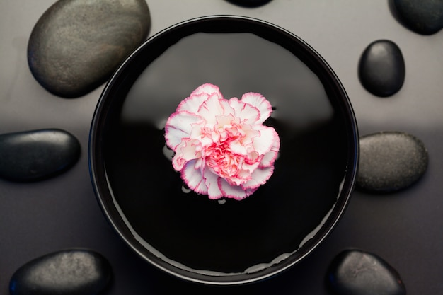 黒い石に囲まれた黒い鉢に浮かぶピンクと白のカーネーション