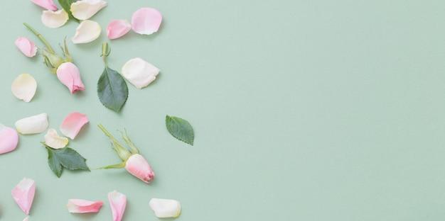 Розовые и белые цветы
