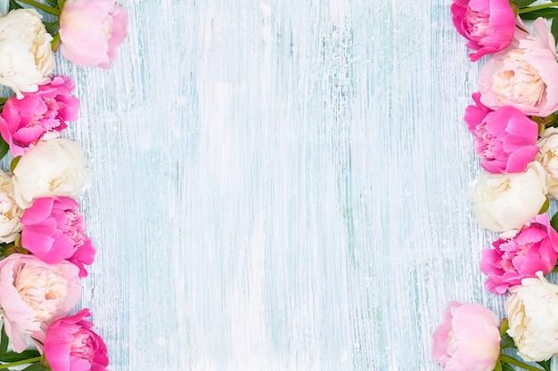 Розовые и белые пионы граничат на синем фоне. праздничный фон, копия пространства, вид сверху. день матери, день святого валентина, концепция дня рождения.