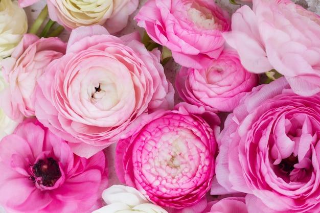 Розовый и белый фон цветы лютик