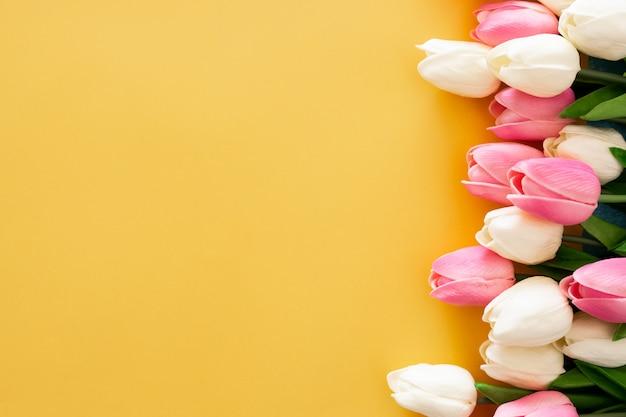 Розовые и белые тюльпаны на желтом фоне