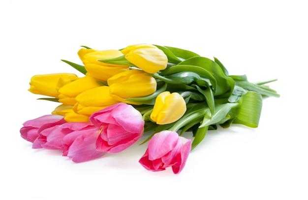 분홍색과 노란색 튤립 꽃 흰색 배경에 고립