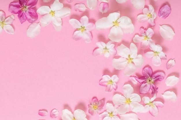 핑크 바탕에 핑크 사과 꽃