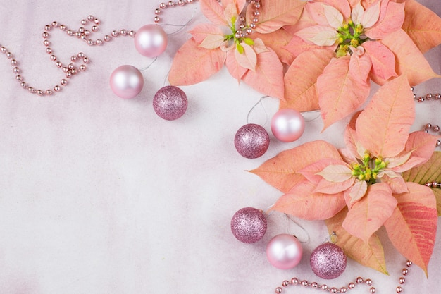 On a pink background pink poinsettia, balls and beads
