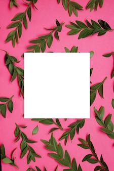 Розовый фон с зелеными растениями и макетом белого квадрата