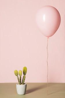 Розовый шар и кактус