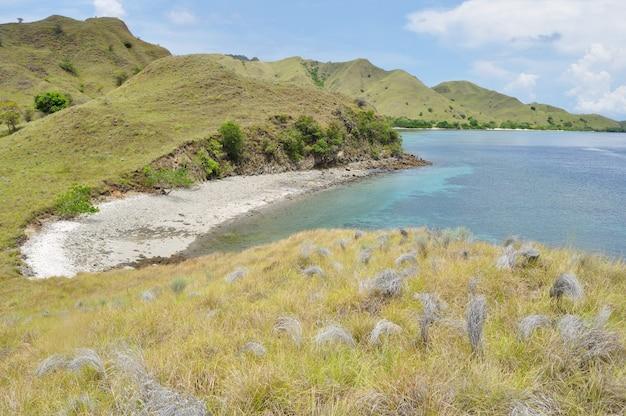 인도네시아 플로레스 섬의 열대 해변 중 하나 인 핑크 비치는 언덕으로 둘러싸여 있습니다.