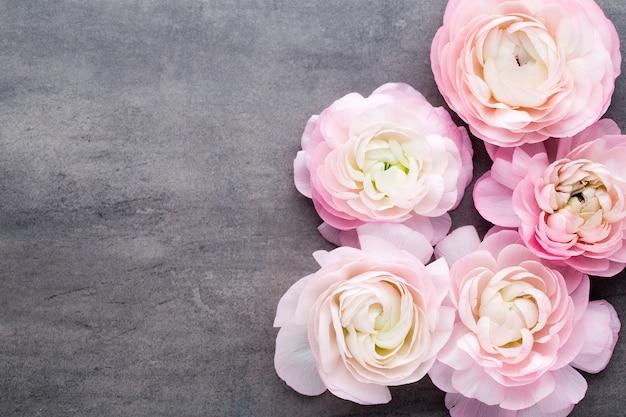 Розовый красивый лютик на сером фоне.