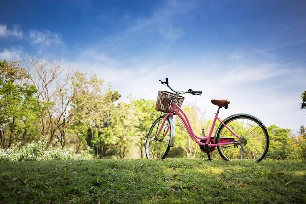 Розовый велосипед в парке